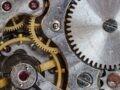 Bitcoin Millionäre - gibt es die wirklich? 7